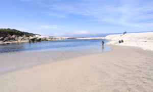 A student standing in the water at Carmel River State Beach